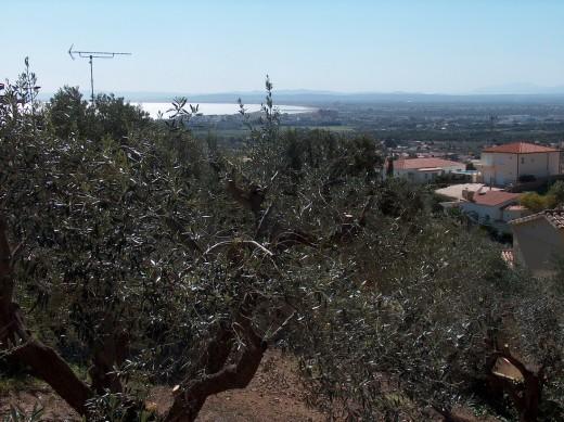 Terrain de 482m2 avec vue mer à Mas Fumats, Roses