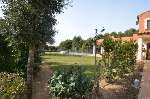 piscine avec jardin arboré