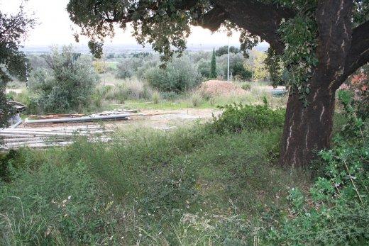 Terrain a Palau Saverdera