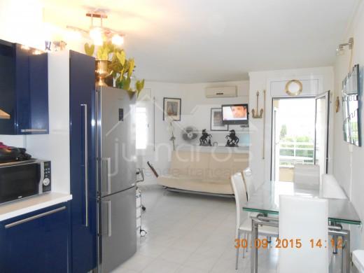 Appartement une chambre avec balcon vue sur le canal, parking possible