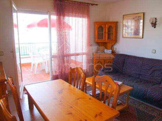 Appartement 40m2, terrasse 10m2 et piscine